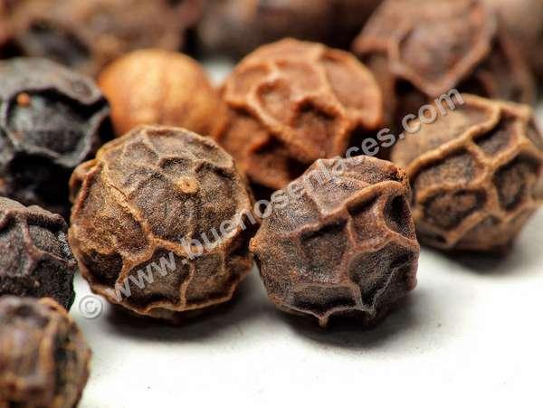 fotos de especias, 5: granos de pimienta