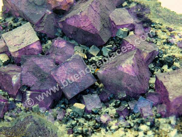 fotos de minerales, 3: flourita violeta