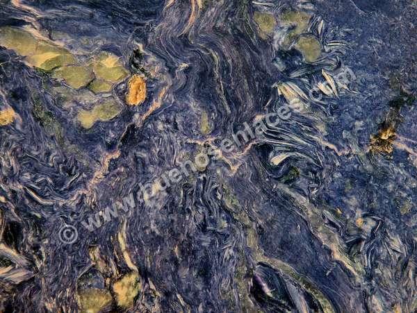 fotos de minerales, 7: chariota