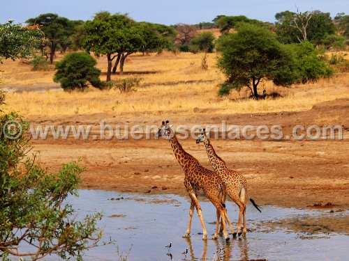 fotos de paisajes naturales, 3: paisaje de Africa