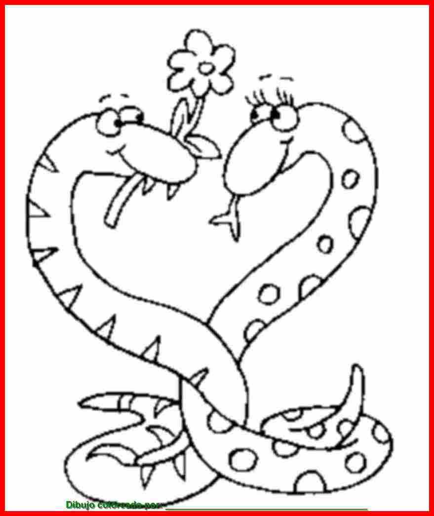 Dibujo De Serpientes  Dibujos De Animales Para Colorear  Imprimir Y