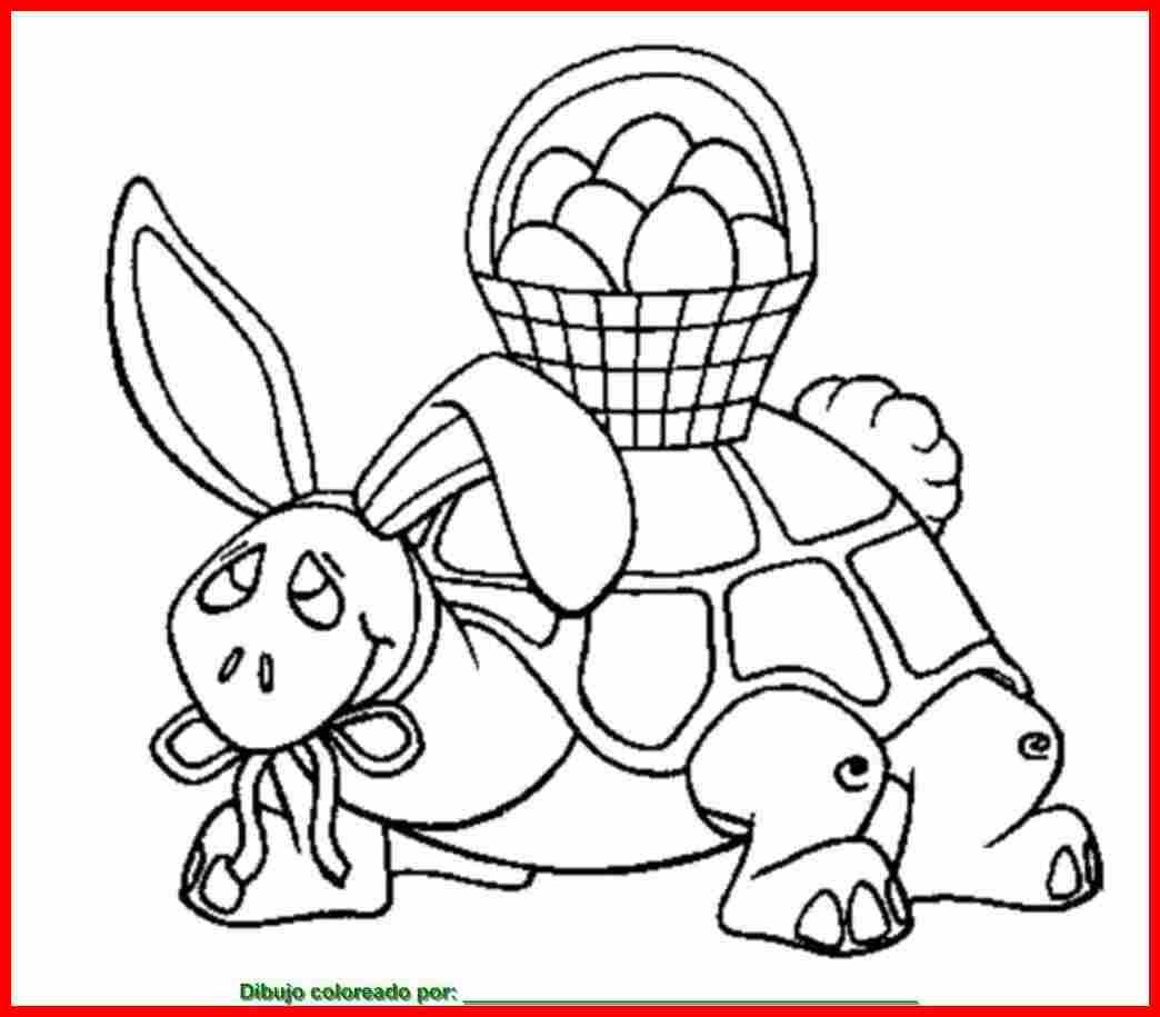 Dibujo De Tortuga Para Colorear E Imprimir
