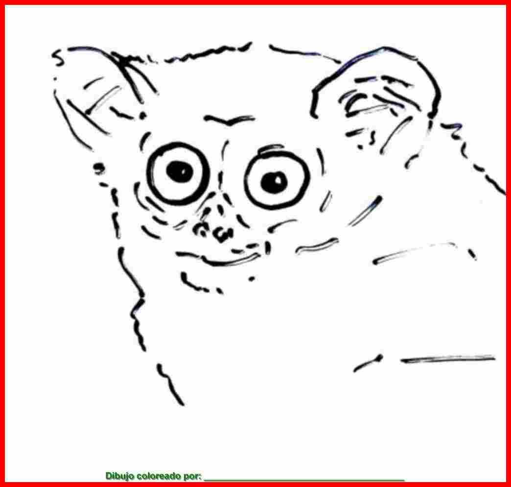 dibujo de mamíferos para colorear e imprimir.
