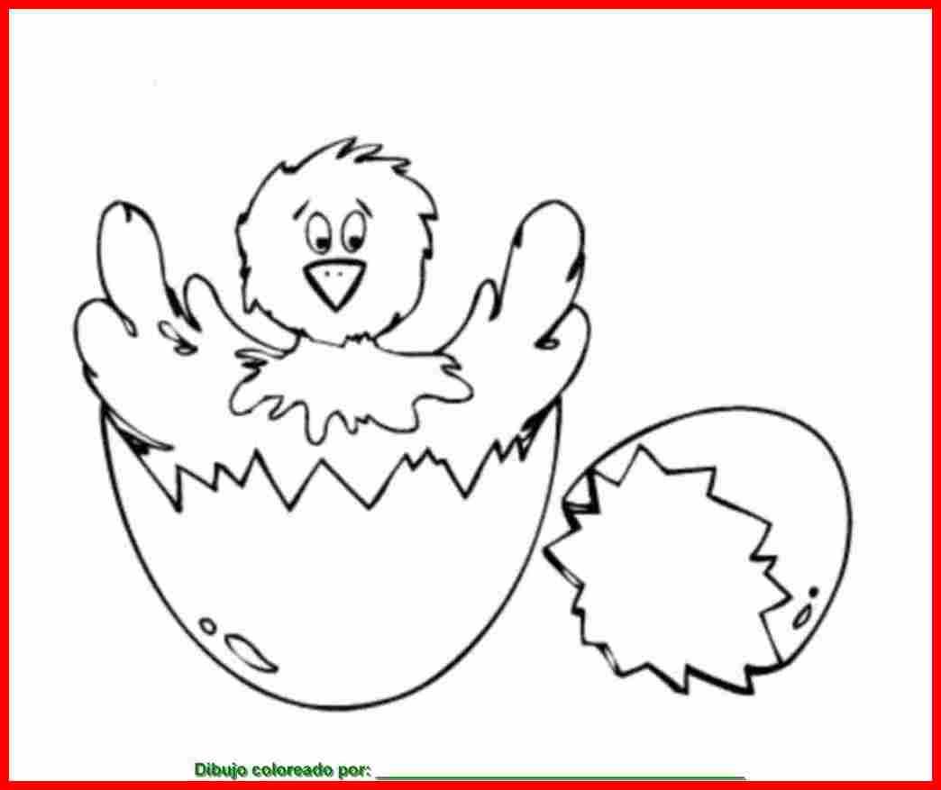 dibujo de pollito para colorear e imprimir