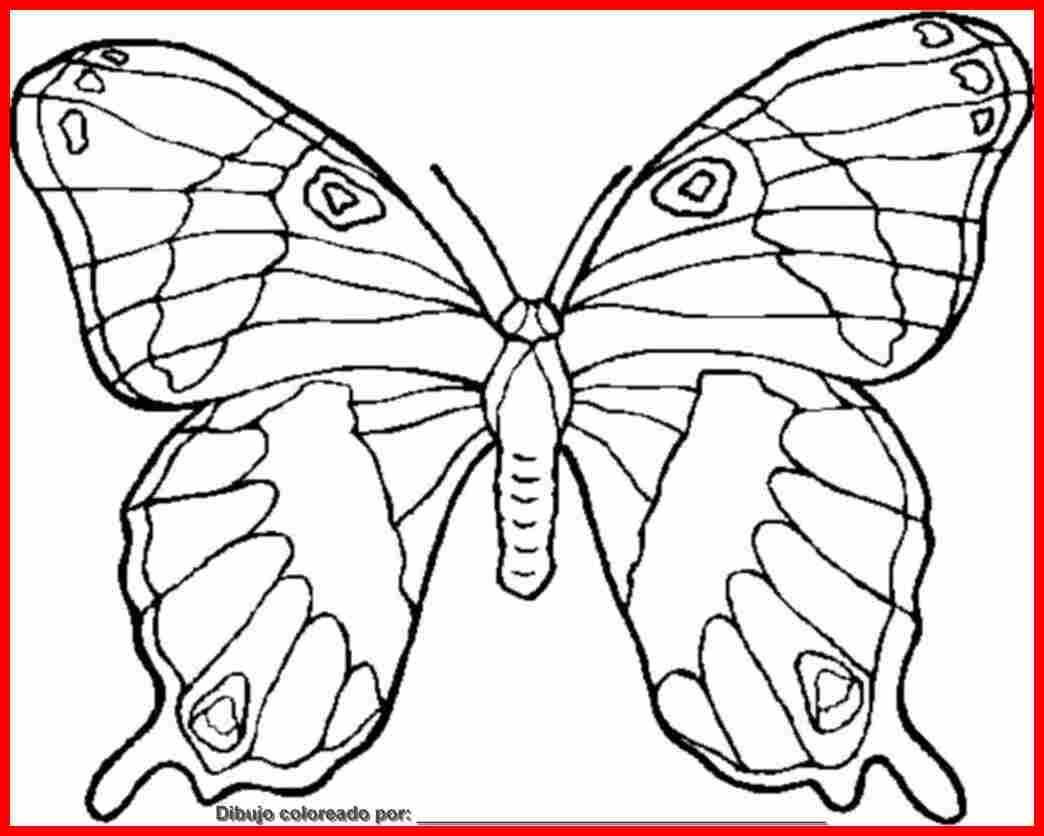 dibujo de mariposa para colorear e imprimir.