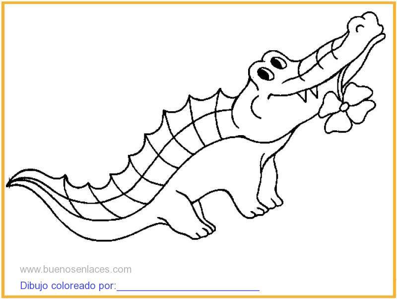 dibujo de cocodrilo para niños para colorear e imprimir.