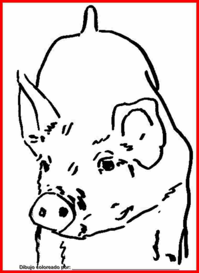 dibujo de animal de la granja para colorear e imprimir.