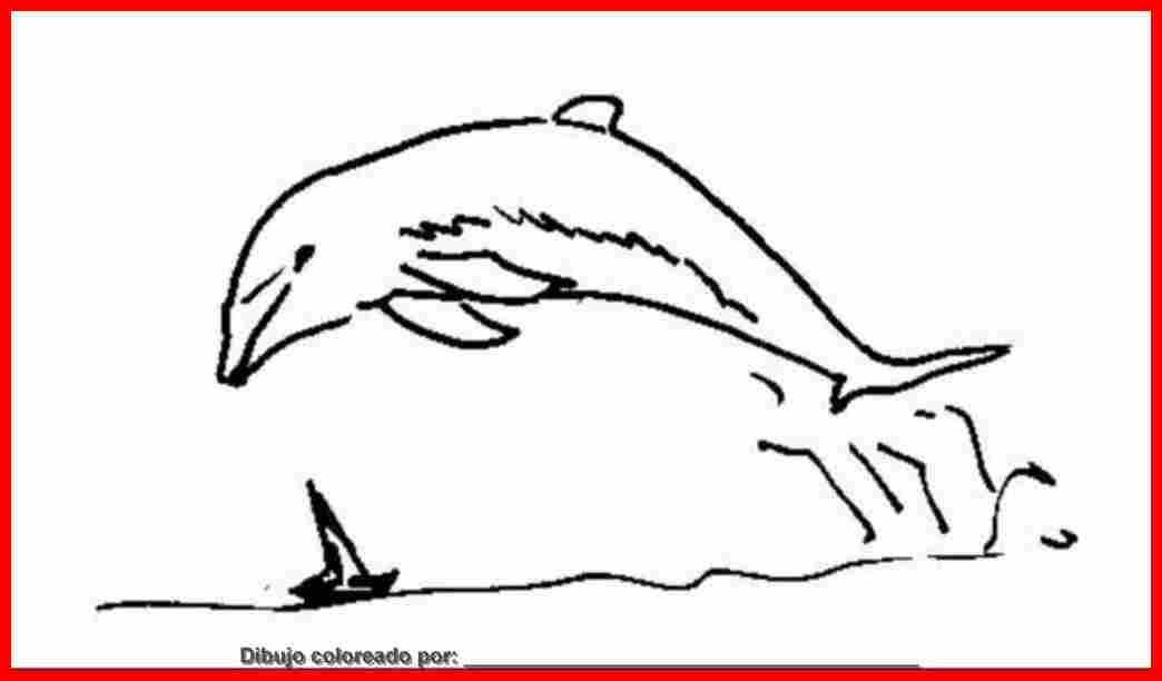dibujo de delfines para colorear e imprimir.