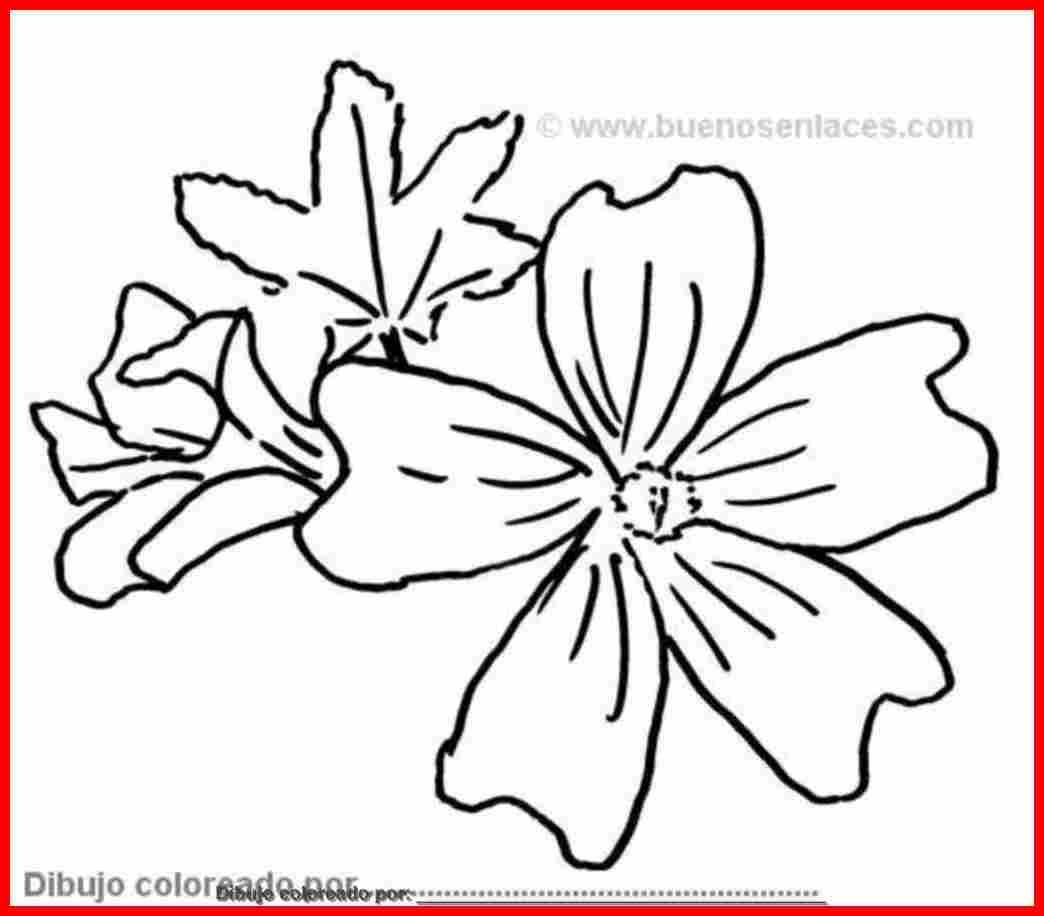 dibujo de flores para pintar para colorear e imprimir.