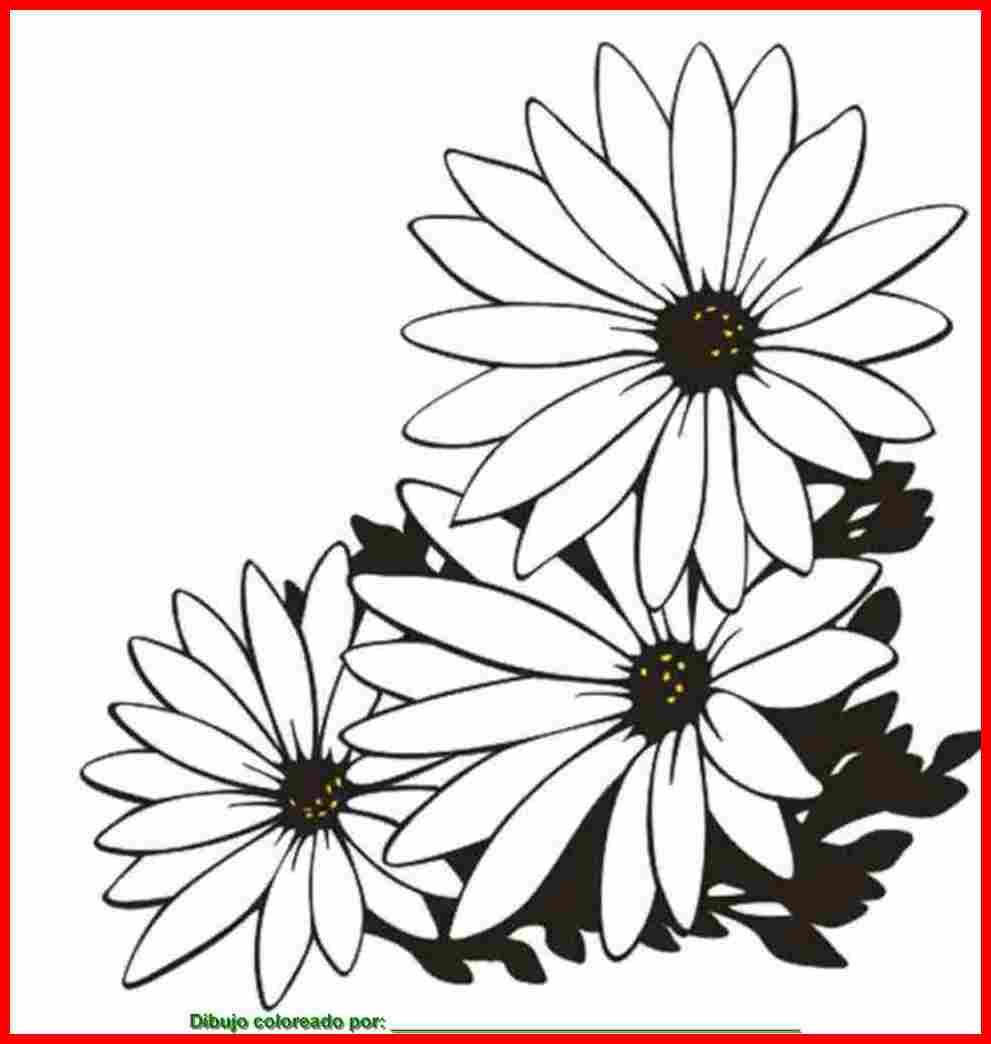 dibujo de flores para colorear e imprimir.
