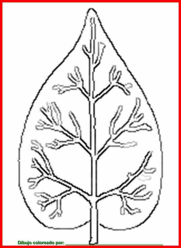 dibujo de plantas para colorear e imprimir.