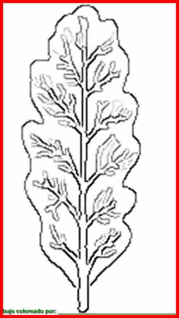 dibujo de hojas simples para colorear e imprimir.