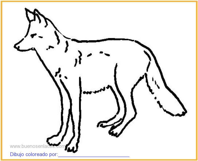 dibujo de lobo para colorear e imprimir.