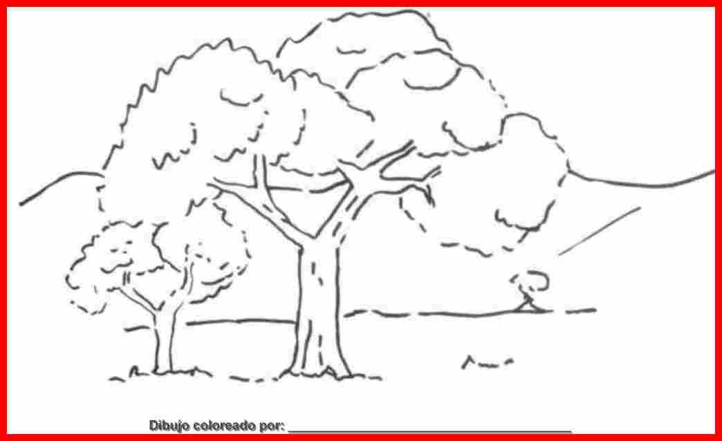 Dibujos Para Colorear Paisajes Naturales: Dibujo De Paisajes Para Colorear E Imprimir