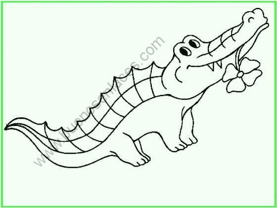 dibujos de animales_salvajes