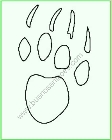 dibujos de huellas
