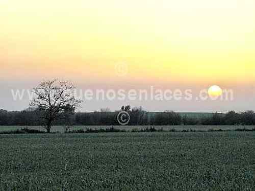 paisajes para colorear. paisajes naturales para