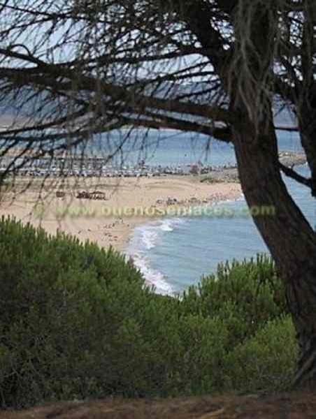 paisajes naturales para colorear. Paisajes marinos