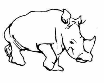 tatuajes en la planta de los pies. tatuajes de rinocerontes. tatuajes de rinocerontes, tattoos