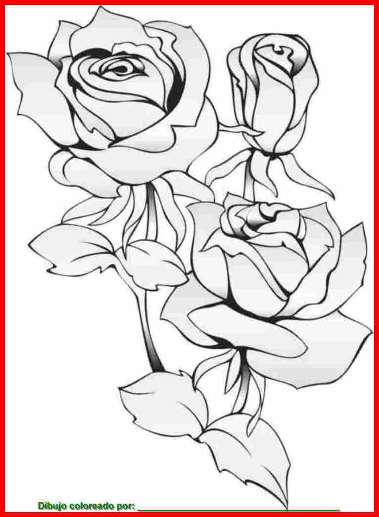 Imagenes De Ramos De Flores Para Colorear Grandes